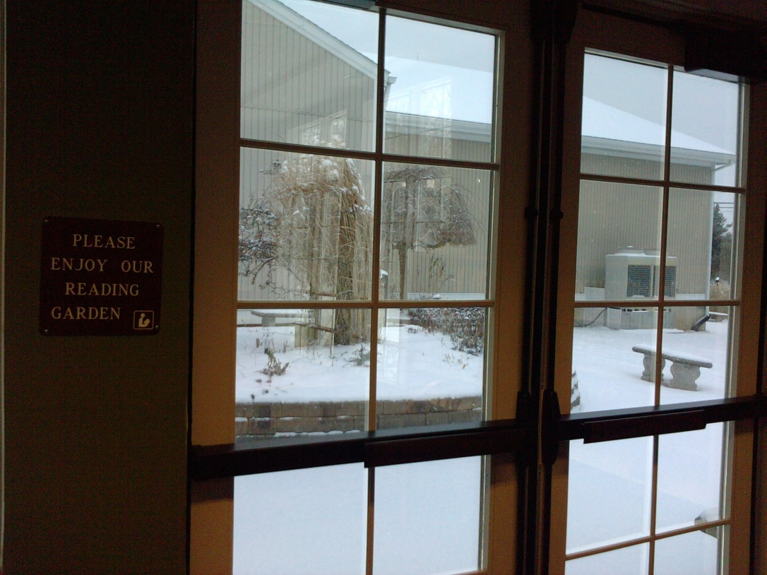 View of the snow covered gardens that surround my local library.  -Children's Wing
