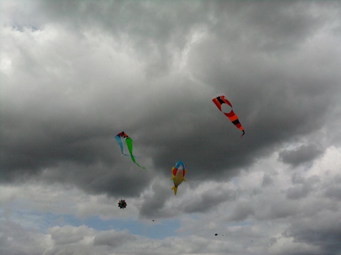 Kite Festival in Lyon Twp, Michigan