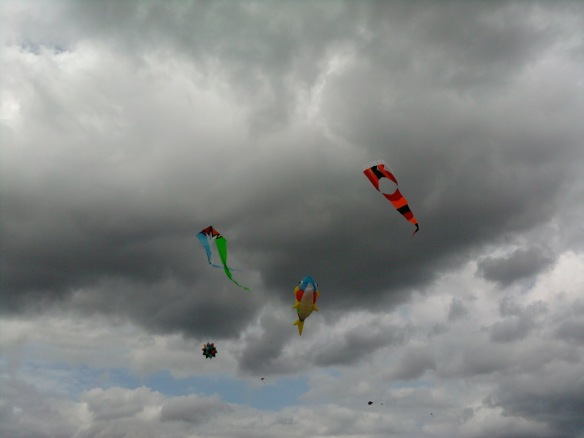 Kite Festival in Lyon Twp, Michigan