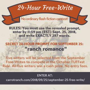 24-HOUR WRITING CONTEST – JULI HOFFMAN