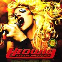 7 Life Changing Lessons From Hedwig and the Angry Inch
